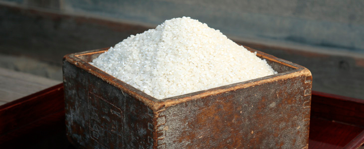 NIPPA米(ニッパマイ)商品一覧